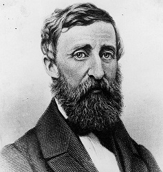 H.D. Thoreau hacia 1861 (Infografía)