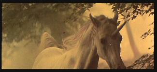 "<img src=""Unicornio"" alt="" El unicornio en el sueño de Deckard>"