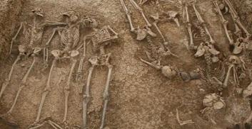 Fosa comun en el cementerio de Malaga