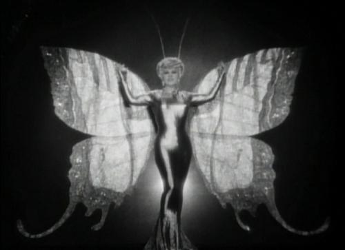 Mae West como mariposa
